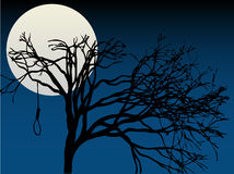 spooky-full-moon-highlight-tree-hanging-noose-15931148.jpg