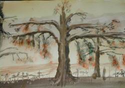 the_hanging_tree_of_the_serengeti.jpg