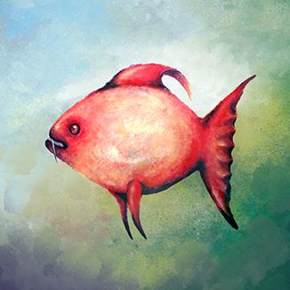 FISCH Illustration