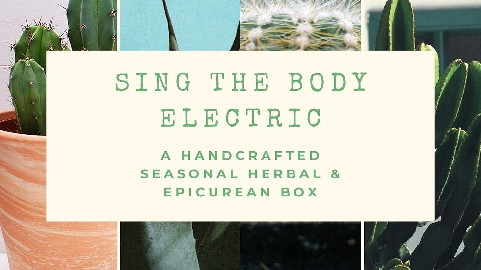 Wild & Wise Herbal Subscription Box - Sing the Body Electric Edition