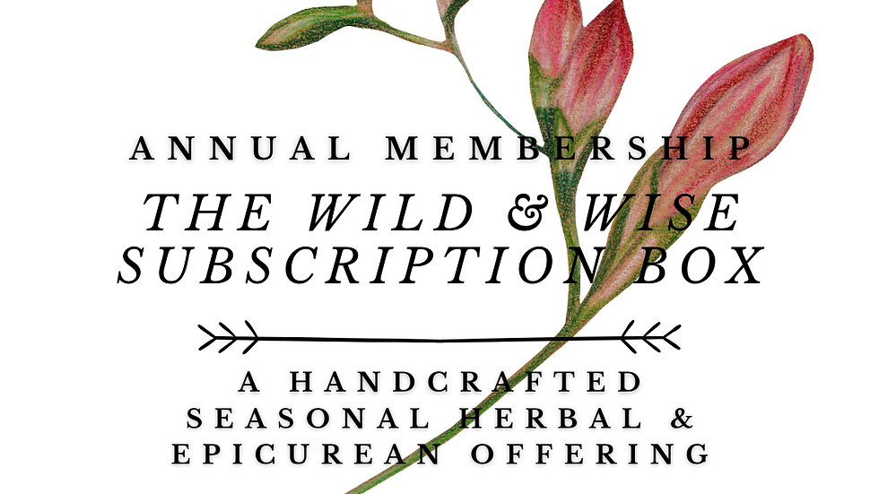 The Wild & Wise Herbal Annual Subscription Box