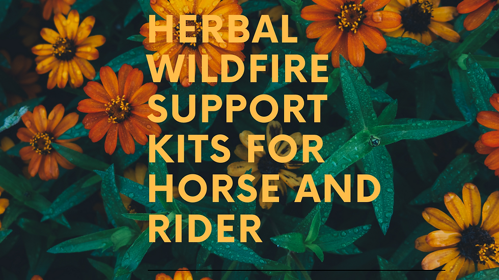 Herbal Wildfire Support Kits for Horse & Rider