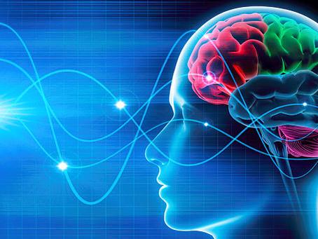 10 Amazing Human Brain Facts