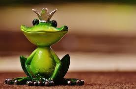 Le prince et la grenouille