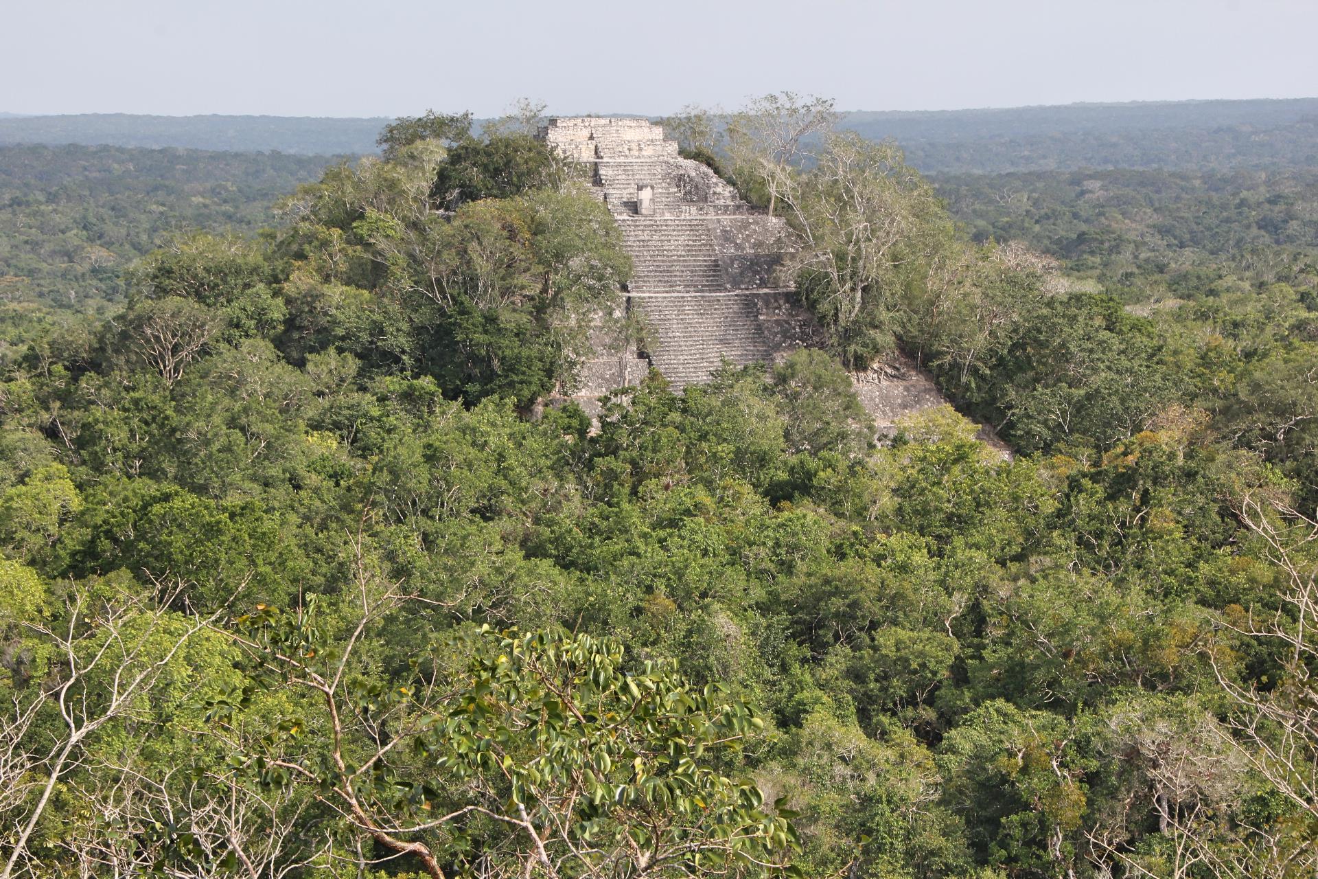 sample pyramid overgrown w jungle