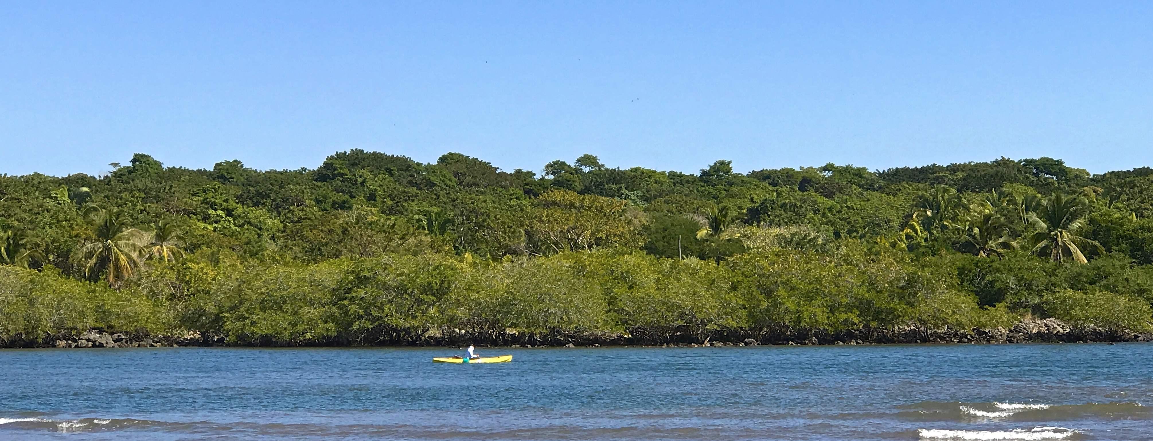 SC River w kayaker