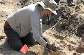 archaeological dig 2