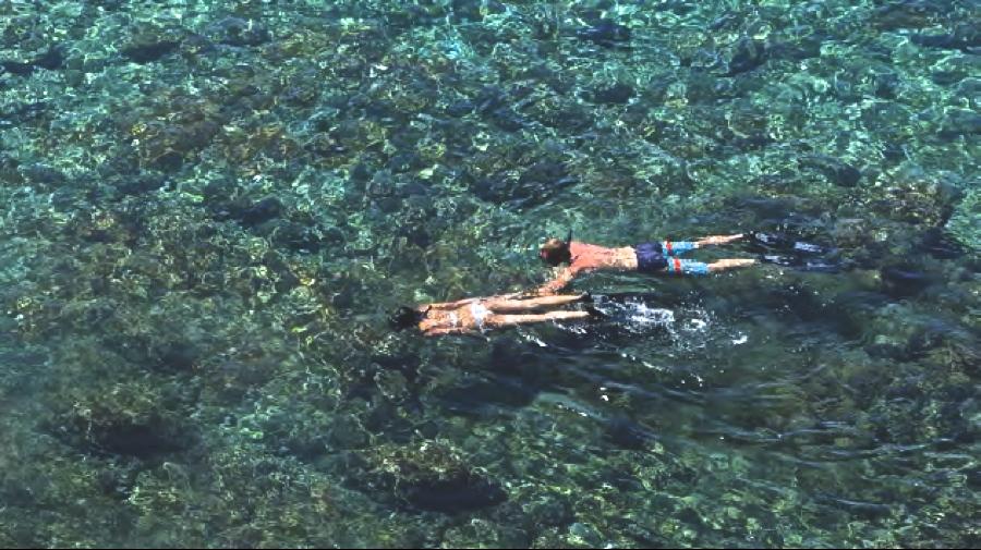 Alila snorkeling