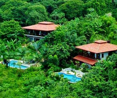 residential interior jungle