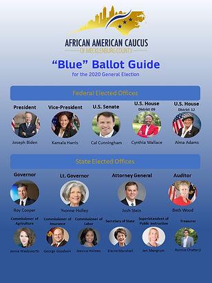 2020 Blue Ballot.jpg