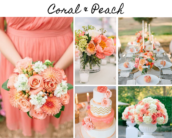 Coral & Peach.png
