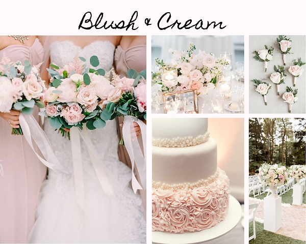 Blush & Cream.png