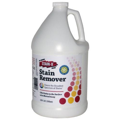 Stain-X Stain Remover Carpet Gallon 128 FL OZ