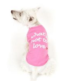 What's Not To Love Dog Tee Shirt