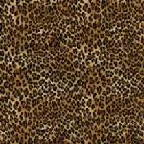 Cheetah Original Custom Dog Diapers Panties Britches