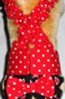 Fancy Red Hearts and Dots Quick Ship Dog Diapers Panties Brit