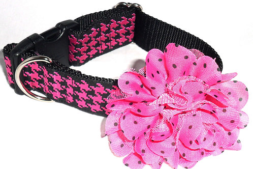 Pink Passion Arglyle Dog Collar with Dog Collar Accessory