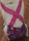 french bulldog heart dog diapers_edited_