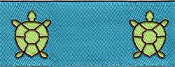 turquoisebrown.jpg