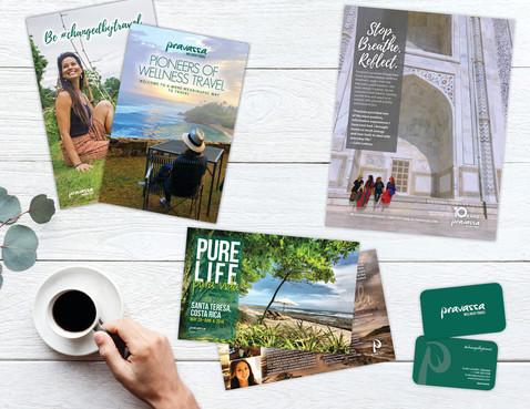 print   mailers   magazine ads