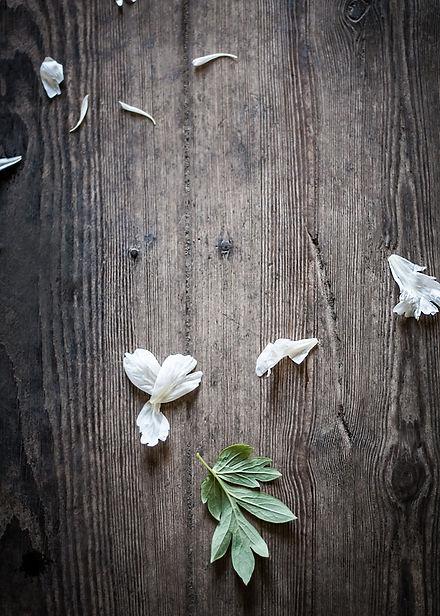 Peony_wooden_floor.jpg