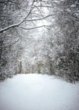 Calendar_snow6.jpg