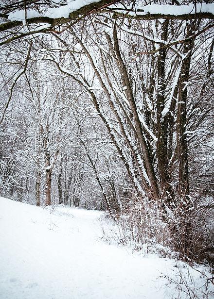 Calendar_snow4.jpg
