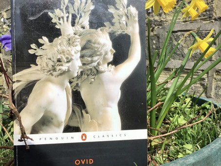 Ovid's Metamorphoses: Asexuality in Classical Myths