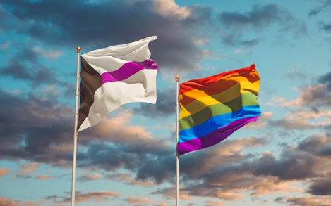 Demisexual flag and LGBTQIA+ flag on poles blowing in the wind