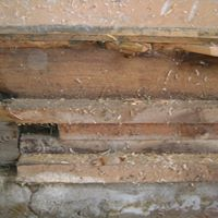 Floor rotted in several spots