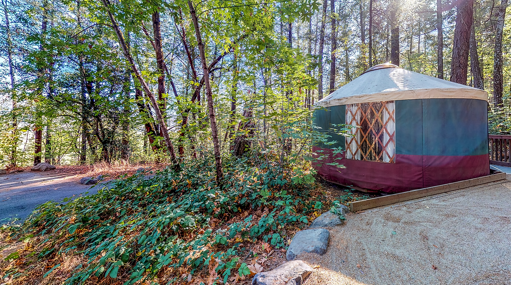 A yurt hidden place nestled in the Northern California redwoods
