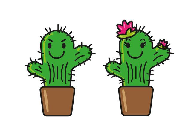cactus chico_a.jpg