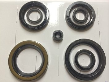 OIL SEAL KIT  ENGINE GEARBOX T150 T160 A75