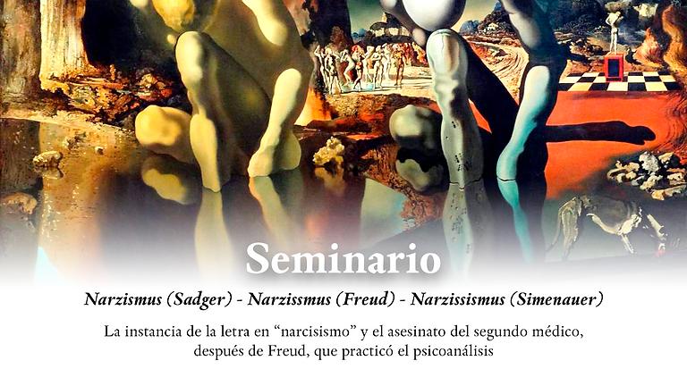 Narzismus (Sadger) - Narzissmus (Freud) - Narzissismus (Simenauer) SEMINARIO de Mario L. Beira