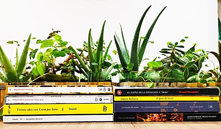 libros-y-revistas-litoral-v3.png