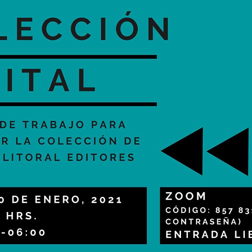 Presentación de colección de EPUBs & Jornada de Trabajo