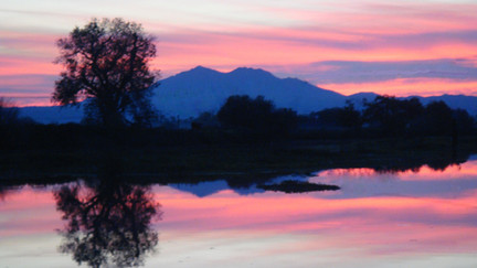 View from the Brentwood Marina on the San Joaquin River Delta