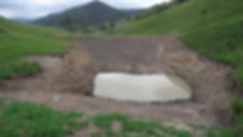 Dam Services Gloucester