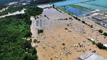 Los seguros y el cambio climático