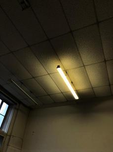yellow_light_francesca_room.jpg
