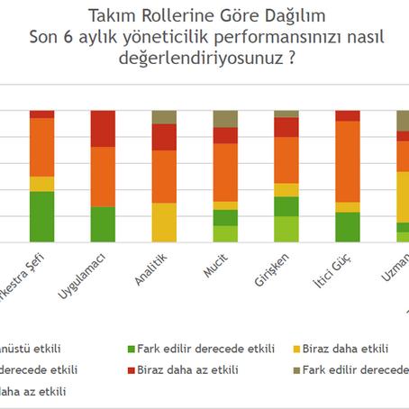 SANAL EKİP ÇALIŞMASI&TAKIM ROLLERİ                                              Anket Analizi