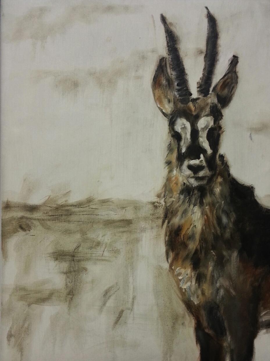 """""""Sable Antelope"""""""
