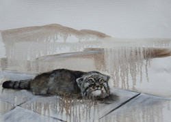 """Pallas Cat in Sidewalk"""