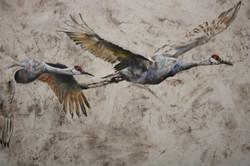 Greater Sandhill Cranes (Detail)