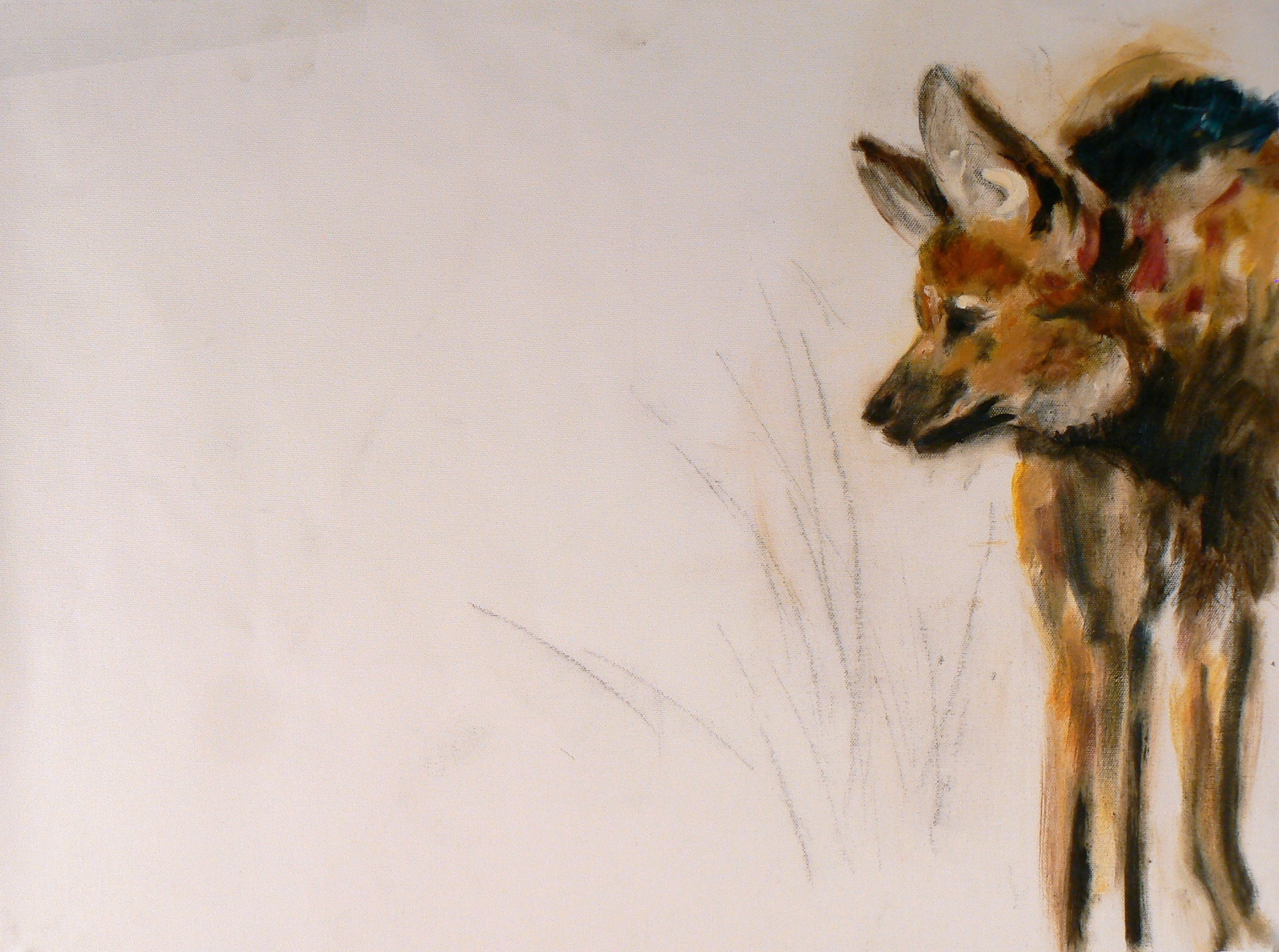 """Maned Wolf"""