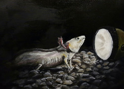 """Axolotl and Flashlight"""