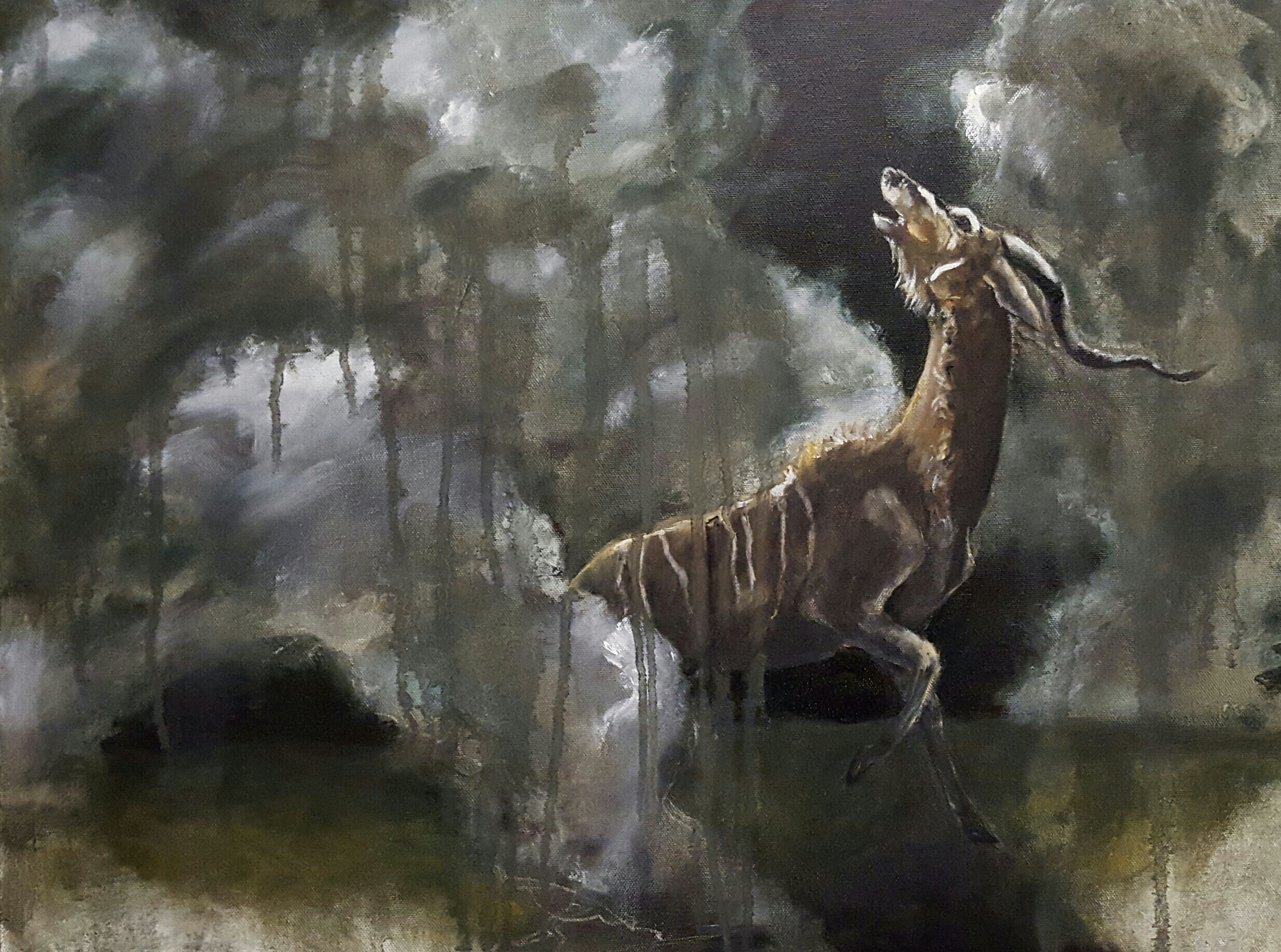 """Greater Kudu in Storm"""