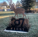 Pronghorn Antelope.jpg