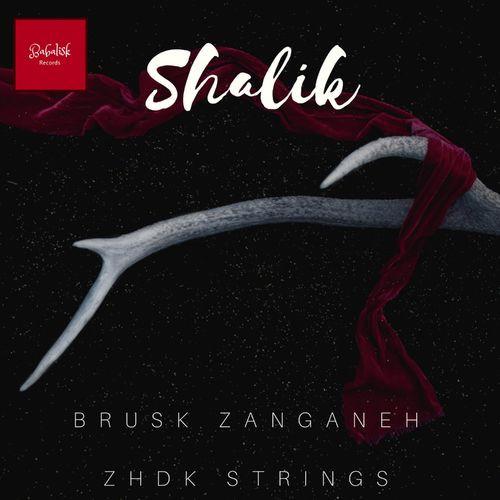Shalik Cover.jpg