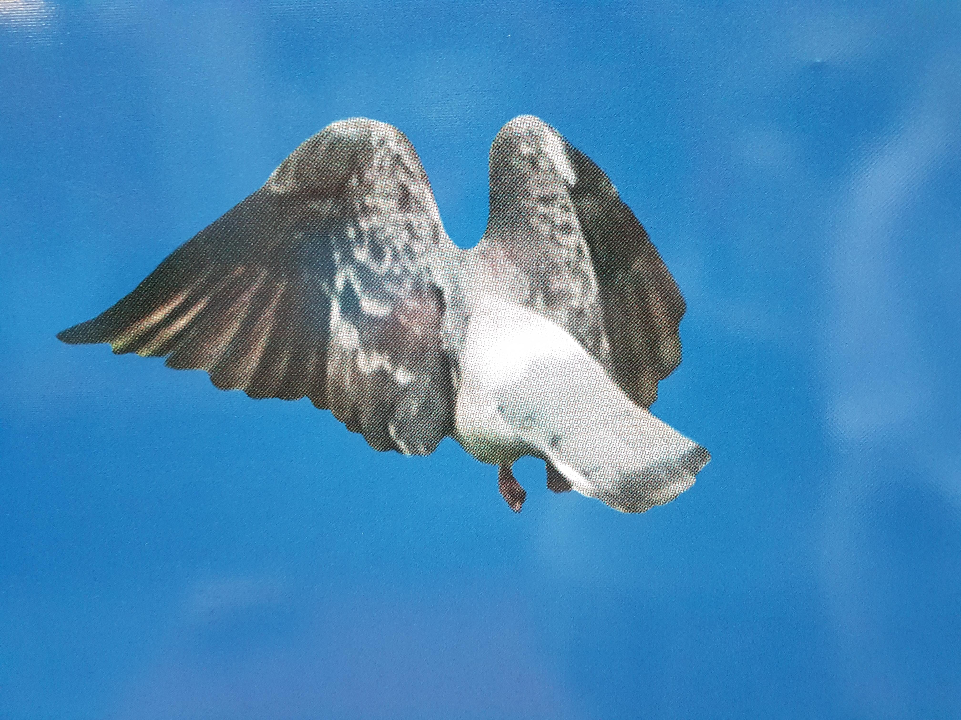 Birdsong (detail)